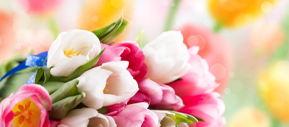 Купить букет роз домашние фото, где купить пищевую гвоздику для глинтвейна